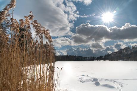 Steißlinger See Schnee