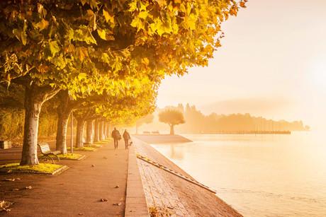 Seestrasse im Herbst