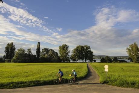 Bodenseeradweg bei Gundholzen