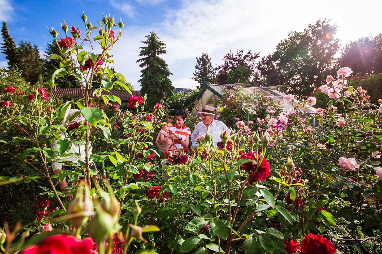Gärten Auer