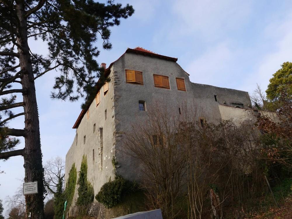 Burg Friedingen